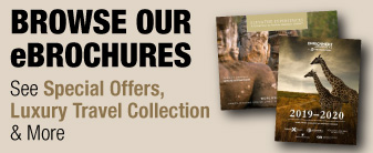 OVC Brochures with Special Offers